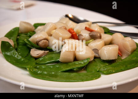Stir-fried scallops with snow pea and mushroom, a popular dish in a chinese restaurant - Stock Photo