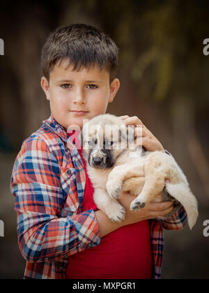 Handsome little boy is holding a dog. Close-up portrait - Stock Photo