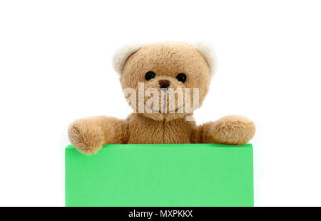 Brown teddy bear holding with the two hands a note in pastel green color with empty space for text message. Photo isolated in a seamless white backgro - Stock Photo