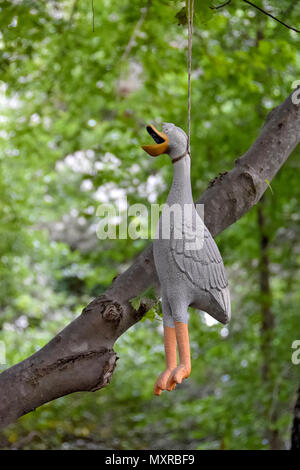 rubber duck hanging from tree branch in summer woods - Stock Photo