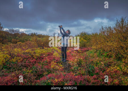 Woman taking pictures in the autumn, Thingvellir National Park, Iceland - Stock Photo