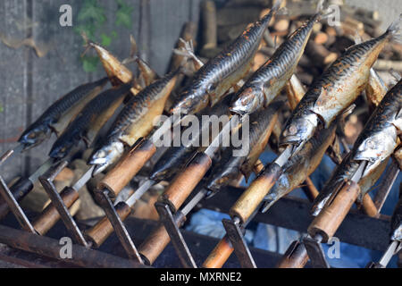 bbq time with grilled mackerels - Stock Photo