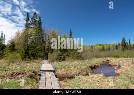 Ontonagon, Michigan - The Beaver Creek Trail over the Little Carp River in Porcupine Mountains Wilderness State Park. - Stock Photo