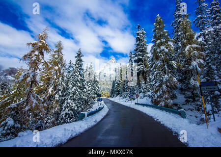 Winter road and trees with snow and alps landscape, Dolomity, Italy - Stock Photo