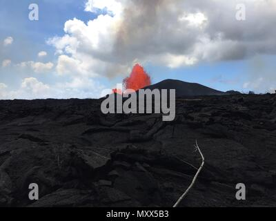 A massive lava fountain spewing magma 230 feet into the air from fissure 8 at the corner of Nohea and Leilani caused by the eruption of the Kilauea volcano June 3, 2018 in Hawaii. The recent eruption continues destroying homes, forcing evacuations and spewing lava and poison gas on the Big Island of Hawaii. - Stock Photo