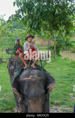 Elephant sanctuary, Kanchanaburi province, Thailand - Stock Photo