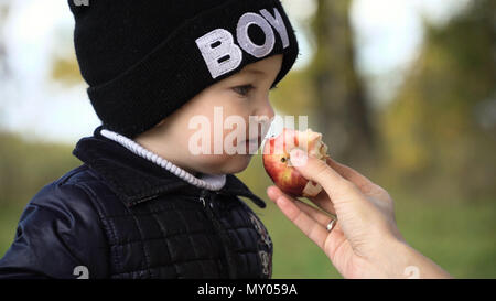 Young family with son at a picnic in the park on a sunny day. Family having picnic outdoors.Cute family picnicking in the park. - Stock Photo