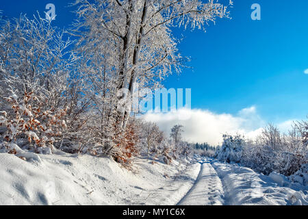 Path in snow covered winter landscape, beautiful scene lit by the sun, blue sky - Stock Photo