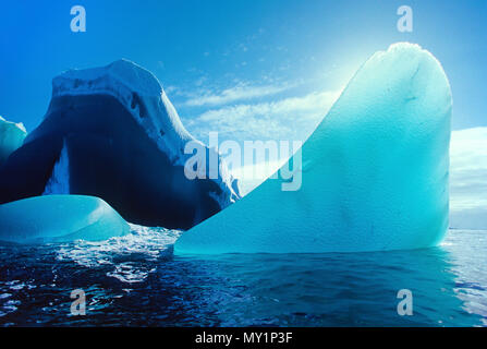 Treibende Eisberge, Peterman Island, Antarktis | Drifting Icebergs, Petermann Island, Antarctic - Stock Photo