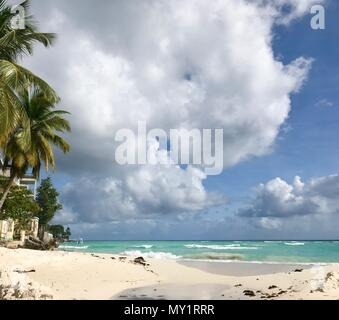 Idyllic beautiful beach in Barbados (Caribbean island) creating the perfect vacation paradise: Nobody, palm trees, white sand, turquoise ocean - Stock Photo