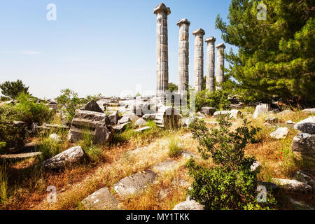 Antique ruins of Athena temple Priene, Turkey, famous place and travel destination. Spring landscape with poppy flowers, ancient stones and columns - Stock Photo
