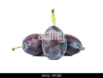 Three fresh plums on white background closeup - Stock Photo