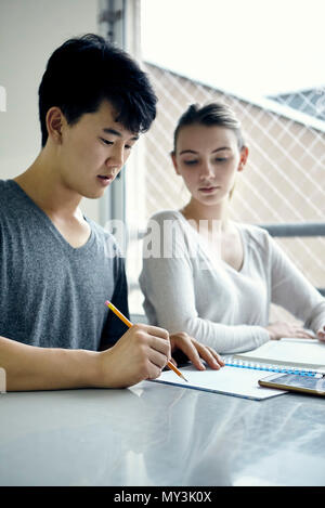 Classmates studying together - Stock Photo