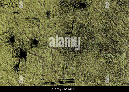 Grunge Ultra orange Plaster concrete texture, stone surface, rock cracked background for postcard. - Stock Photo