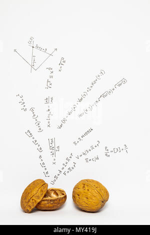 Concept of the phrase mathematics in a nutshell. Mathematical formulas drawn on white paper with walnuts - Stock Photo