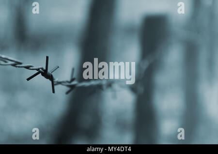 Macro shot of an element of old and rusty barbed wire with a blurred background. Fragment of a village fence of a territorial site - Stock Photo
