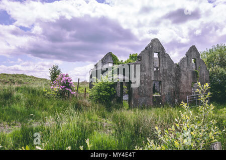 An abandoned stone house without a roof surrounded by vegetation near Ballaghbeama Gap in county Kerry, Ireland - Stock Photo