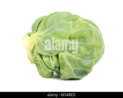 Fresh brussel sprouts isolated on white background - Stock Photo