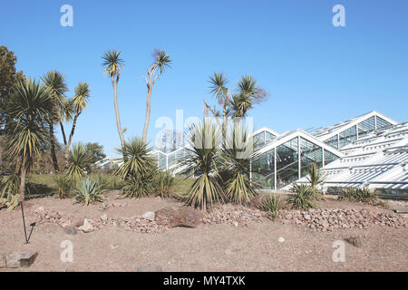 Plants in front of a glass house in the Royal Botanic Gardens, London. - Stock Photo