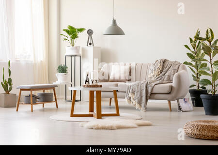 Real photo of a beige sofa with a cushion and a blanket standing in front of a table and under a lamp in a living room interior with plants and decora - Stock Photo