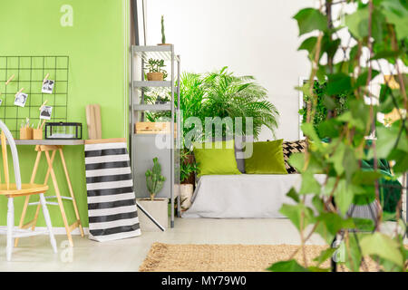 Striped bag next to desk and chair in green open space interior with pillows on bed. Real photo - Stock Photo