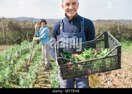 Man with crate of vegetables in garden, woman working in background - Stock Photo