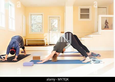 Teacher and women practicing downward facing dog (adho mukha svanasana) yoga pose in yoga studio - Stock Photo