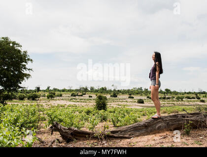 Young female tourist looking out at Chobe National Park, Botswana, Africa - Stock Photo