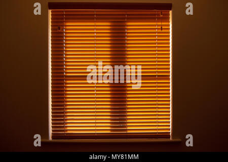 Closed window blinds - Stock Photo