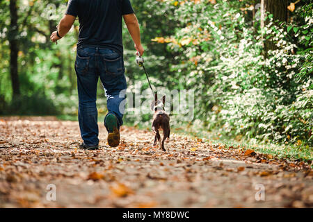 Man walking dog in rural setting, low section, rear view - Stock Photo