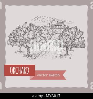 Farmhouse and orchard vector sketch. - Stock Photo
