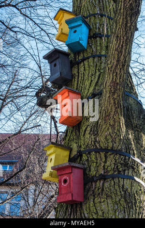 Bird Hotel Collection of bird breeding & nesting boxes tied to tree - Stock Photo