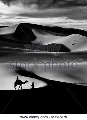 Camel Rider Silhouette in Sahara Desert Morocco - Stock Photo