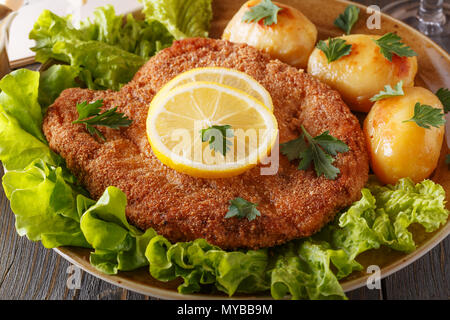 Wiener schnitzel with potatoes and salad, selective focus. - Stock Photo