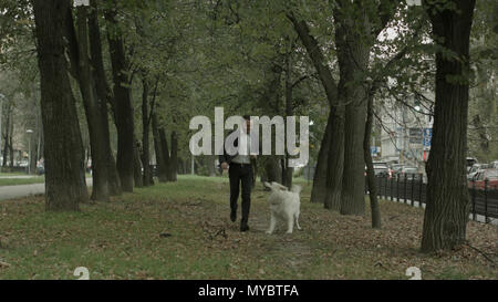 Business man running with playful big white dog in the green city park - Stock Photo