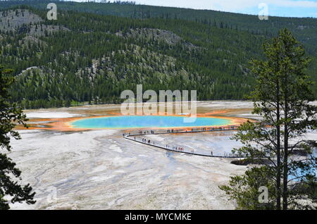 Queue at the Grand Prismatic Spring, Yellowstone National Park, Wyoming