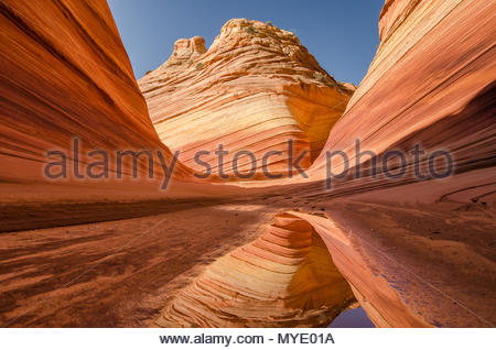 Reflections at The Wave, North Coyote Buttes. - Stock Photo