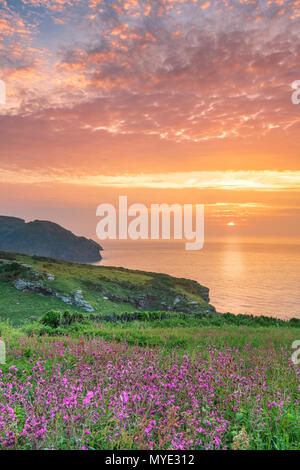 Bossiney Cove, Cornwall, UK. 6th June, 2018. UK Weather - After a warm and sultry day, cloud cover builds as the sun sets over the headland at Bossiney Cove in Cornwall, with the forecast set for a cooler spell in the South West of England. Credit: Terry Mathews/Alamy Live News - Stock Photo