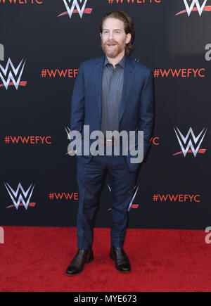 North Hollywood, CA, USA. 8th June, 2018. 06 June 2018 - North Hollywood, California - Seth Green. WWE FYC Event held at Saban Media Center at the Television Academy. Photo Credit: Birdie Thompson/AdMedia Credit: Birdie Thompson/AdMedia/ZUMA Wire/Alamy Live News - Stock Photo