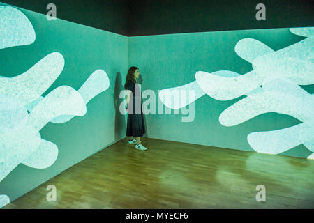 London, UK. 7th Jun, 2018. Tom Lock, Within, 2017 - The London Open 2018 at the Whitechapel Gallery. This free exhibition brings together today's' most exciting' contemporary art. It runs from 8 June – 26 August 2018. Credit: Guy Bell/Alamy Live News - Stock Photo