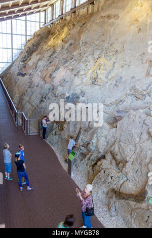 Visitors admiring the wall of 1500 dinosaur fossils at the Dinosaur Quarry Visitor Center in Dinosaur National Monument, Utah. - Stock Photo
