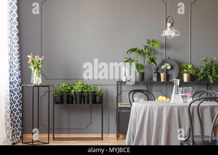 Pink flowers and plants in grey dining room interior with lamp above round table. Real photo