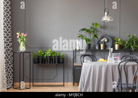 Lamp above dining table with chairs in grey apartment interior with plants and flowers. Real photo