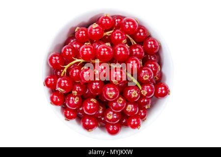 Red currants berries from above bowl isolated on a white background - Stock Photo