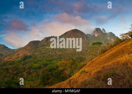 Early morning in Altos de Campana National Park, Cordillera Central, Republic of Panama. In the far background (right) is Cerro Trinidad, 975 m. - Stock Photo