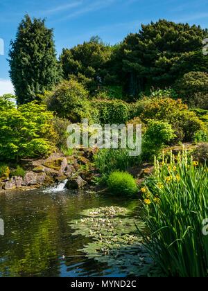 The rock garden on sunny day with blue sky, Royal Botanic garden, Edinburgh, Scotland, UK - Stock Photo