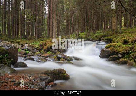 Long expo shot of Rio di San Pellegrino in the San Pellegrino Valley in the Italian Dolomites - Stock Photo