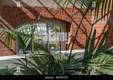 View from inside theTropical Ravine across to the glass Palm House in Botanic Gardens Belfast. - Stock Photo