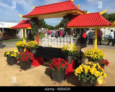 Merseyside, UK. 20th Aug, 2015. Southport Flower Show 20th August 2015 Credit:  Cernan Elias / StockimoNews/Alamy - Stock Photo