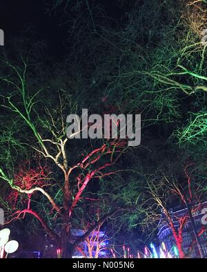 London, UK. 14th Jan, 2016. Trees in Leicester Square during the Lumiere London exhibition. Credit:  Jessica Gwynne/StockimoNews/Alamy - Stock Photo